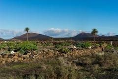 Montanas del Fuego Στοκ Φωτογραφίες
