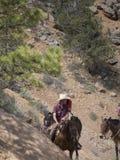 Montando en Bryce Canyon National Park, Utah, los E.E.U.U. Fotos de archivo