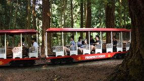 Montando o trem através de Stanley Park filme