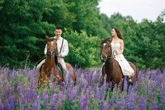 Montando os recém-casados no campo Fotos de Stock Royalty Free