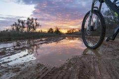 Montando uma bicicleta através do campo, com uma roda de uma bicicleta em uma poça fotografia de stock royalty free