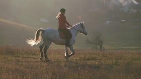 Montando un cavallo attraverso un campo intorno ad un settore residenziale con le case Movimento lento video d archivio