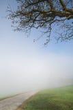 Montanhês nevoento Foto de Stock
