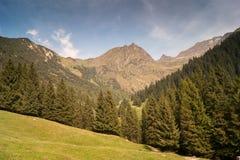 Montanha Foto de Stock