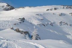 Montanha alpina Imagens de Stock