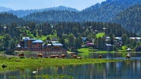 Montanha Altai Fotografia de Stock Royalty Free