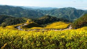 A montanha amarela Fotografia de Stock Royalty Free