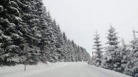 Montanha ausente nevada fotografia de stock