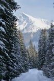 Montanha bonita grande no inverno Fotografia de Stock Royalty Free