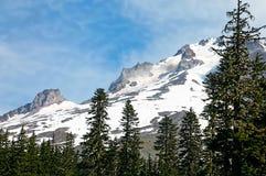 Montanha coberto de neve e pinheiros Foto de Stock