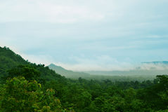 Montanha com névoa após a chuva Imagens de Stock Royalty Free