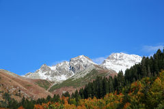 A montanha com neve na paisagem do outono com floresta colorida Fotos de Stock