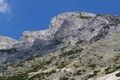 Montanha da cabeça de cães Áustria, Tirol, Hinterhornalm Fotografia de Stock