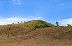 Montanha da grama Imagem de Stock Royalty Free