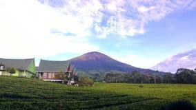 Montanha da manhã Fotos de Stock