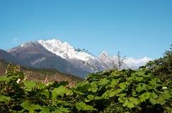 Montanha da neve Fotos de Stock Royalty Free