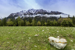 Montanha da neve Imagem de Stock