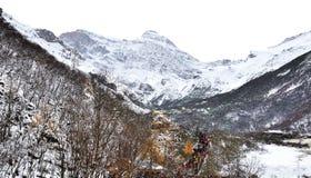 Montanha da neve em Huanglong Foto de Stock