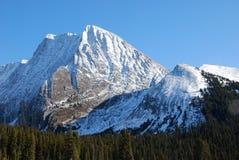 Montanha da neve em Montanhas Rochosas fotos de stock