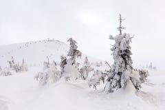 Montanha da neve Montanhas sob a neve no inverno Foto de Stock