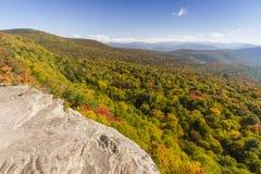 Montanha da pantera da borda gigante Imagem de Stock Royalty Free