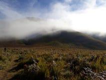 Montanha da vista Imagem de Stock Royalty Free