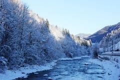 Montanha de Áustria do inverno Fotos de Stock