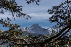 A montanha de Acherkogel nos cumes de Ã-tztaler Fotografia de Stock