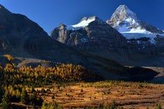 Montanha de Assiniboine no por do sol na queda Fotografia de Stock