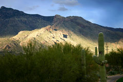 Montanha de Catalina Fotografia de Stock
