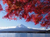 Montanha de Fuji com folha de bordo vermelha e turismo no barco no lago Imagens de Stock Royalty Free