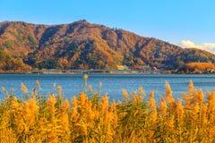 Montanha de Fuji no outono com o céu azul no kawaguchiko do lago Imagem de Stock