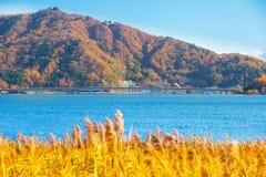 Montanha de Fuji no outono com o céu azul no lago Fotos de Stock