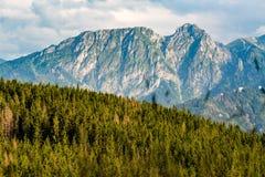 A montanha de Giewont, montanhas inspiradores ajardina no verão Tatras Foto de Stock Royalty Free