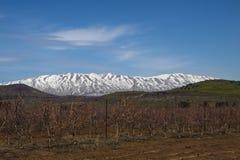 Montanha de Hermon Foto de Stock Royalty Free