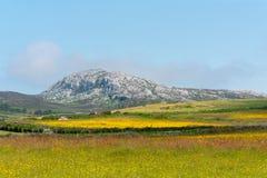 Montanha de Holyhead Fotos de Stock
