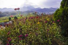 Montanha de Huangshan a oeste do cenário de anhui Imagem de Stock
