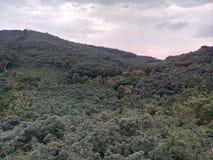 Montanha de Kerala imagem de stock royalty free