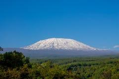 Montanha de Kilimanjaro foto de stock royalty free