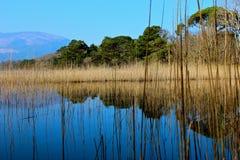 Montanha de Killarney Imagem de Stock
