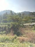 Montanha de Lawu foto de stock