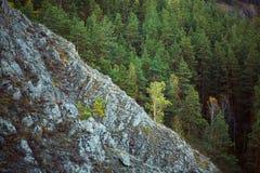 Montanha de pedra e noite misturada do outono da floresta fotos de stock