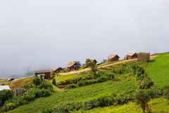 Montanha de Phutabberk, Tailândia Fotos de Stock