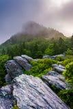 Montanha de primeira geração na névoa, perto de Linville, North Carolina Fotografia de Stock Royalty Free