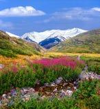 Montanha de Rila, Bulgária Imagem de Stock Royalty Free