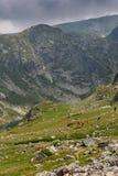 Montanha de Rila perto dos sete lagos Rila Fotografia de Stock