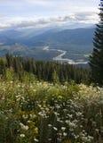 Montanha de Sauk Foto de Stock Royalty Free