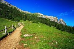 Montanha de Sciliar em Itália Fotografia de Stock