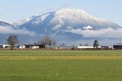 Montanha de Sumas Imagens de Stock