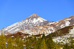 Montanha de Teide Imagem de Stock Royalty Free